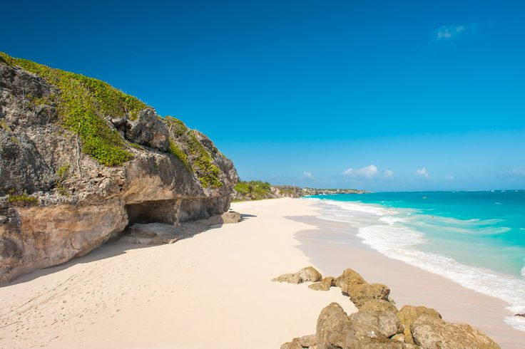 50 Best Beautiful Barbados Images On Pinterest: 1013 Best Barbados Images On Pinterest