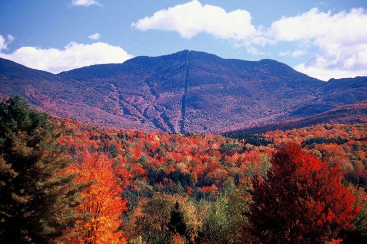 Deník Dominiky B. - Vermont | Marianne
