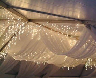 Winter wonderland themed wedding.  LOVE the lights and sheer fabric.