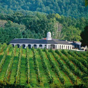 Charlottesville, VA Wineries