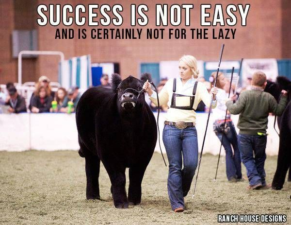Success Is Not Easy And Is Certainly Not For The Lazy - Ranch House Designs Livestock Motivation