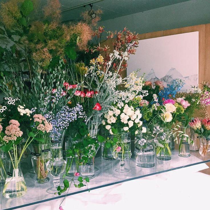 bedroomオープンしました 本日 in bedroom 2日目となりました お花も通常通り販売しているので是非遊びにきてください そして本日のかすみ草はライトブルーです 20時までお待ちしております by edenworks_bedroom