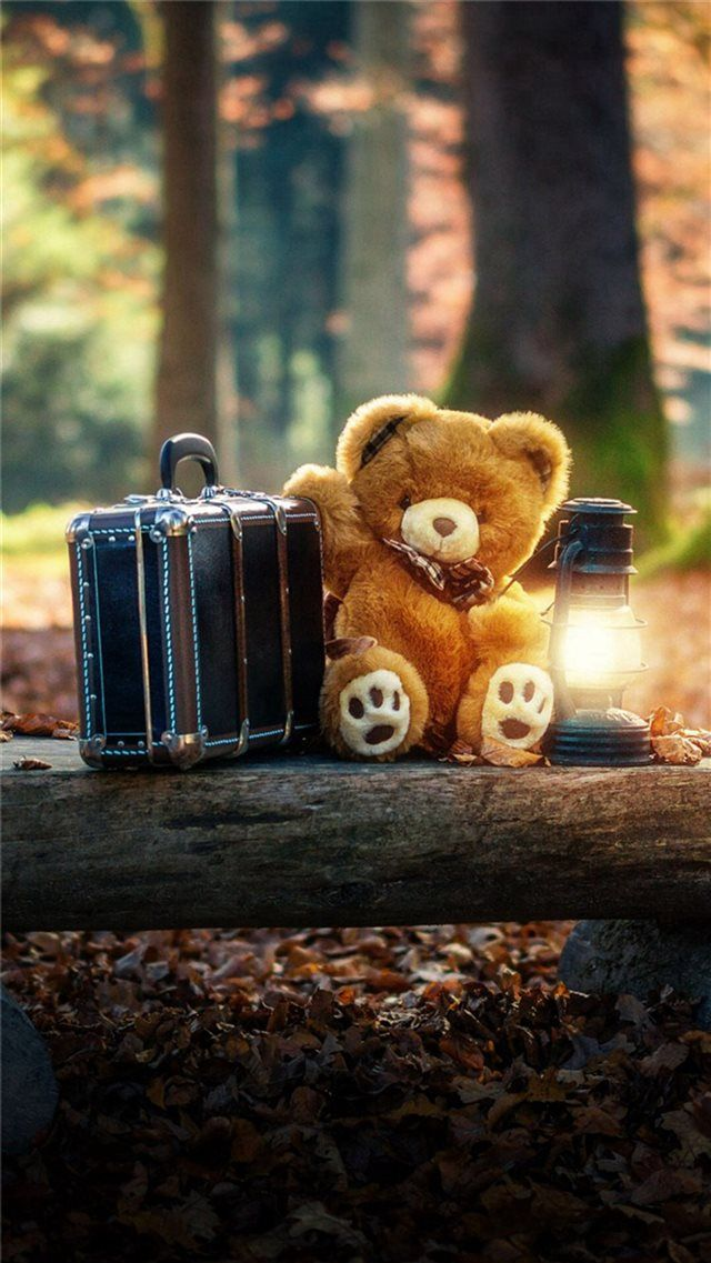 Forest Cute Bear Suitcase Lovely iPhone 8 wallpaper in