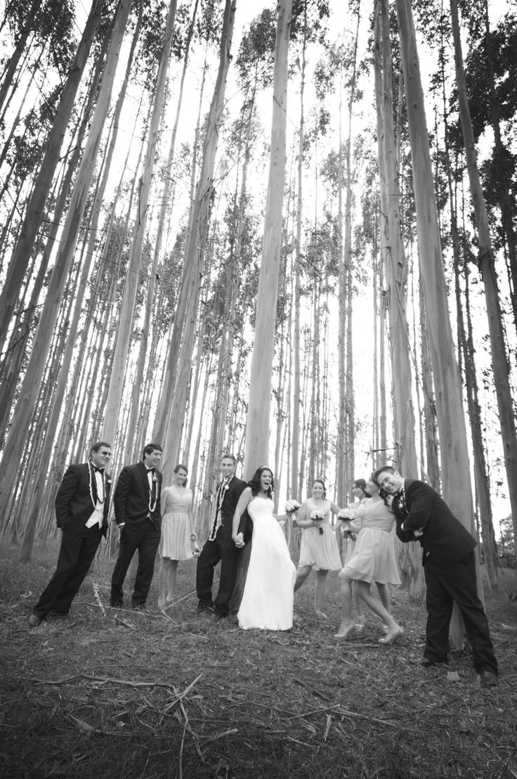 Fun in the trees...  www.weddingphotographerschristchurch.com