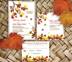 byDolceRoopa Wedding & Bespoke Stationery