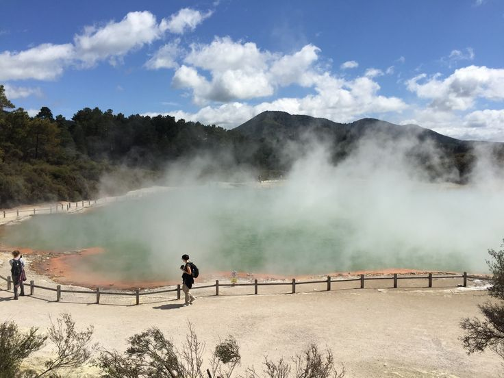 Penembakan New Zealand Pinterest: 17 Best Ideas About Rotorua New Zealand On Pinterest
