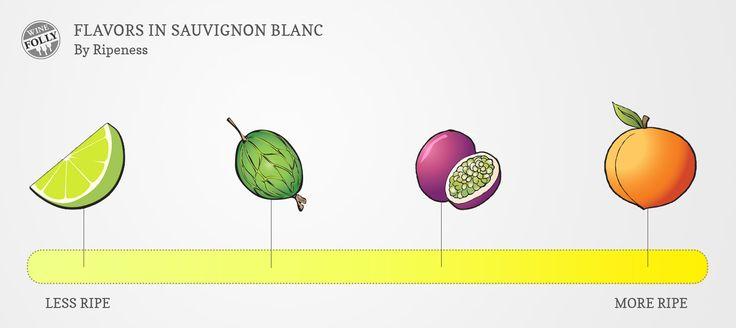 Sauvignon Blanc Taste Profile by Ripeness
