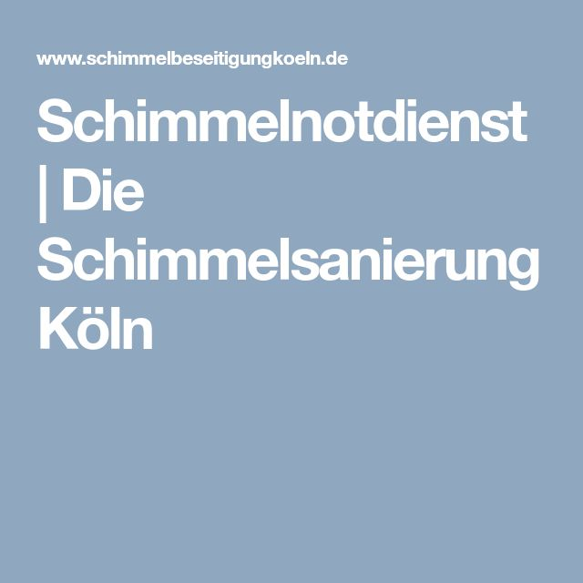 Schimmelnotdienst | Die Schimmelsanierung Köln
