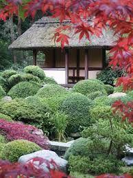 Billedresultat for japanske haver
