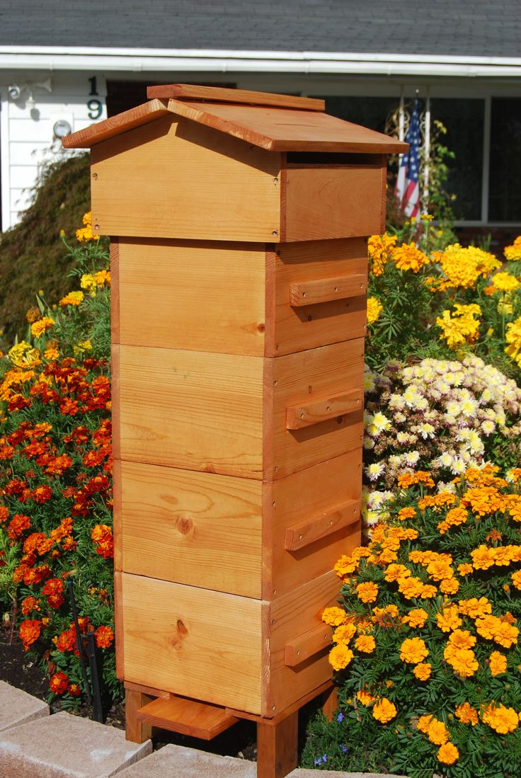 How to Build a Beehive in 6 Easy Steps? | How to build a shed