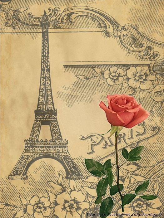 ракитник франция открытка картинка этот