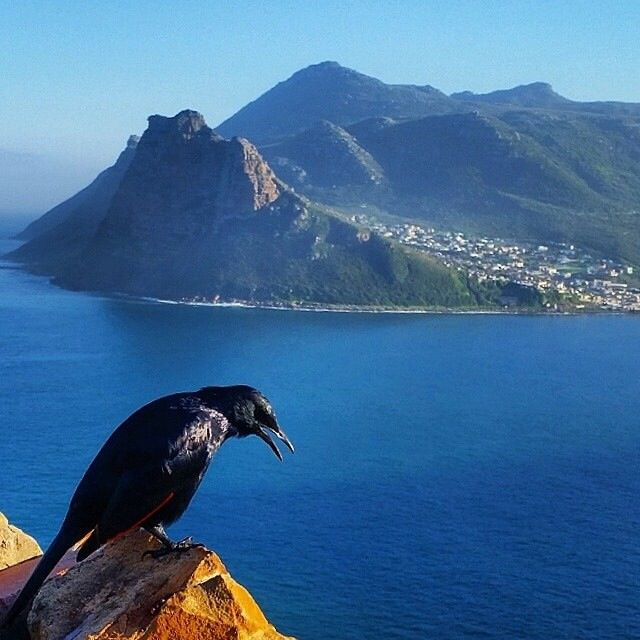 Houtbay Cape Town South Africa