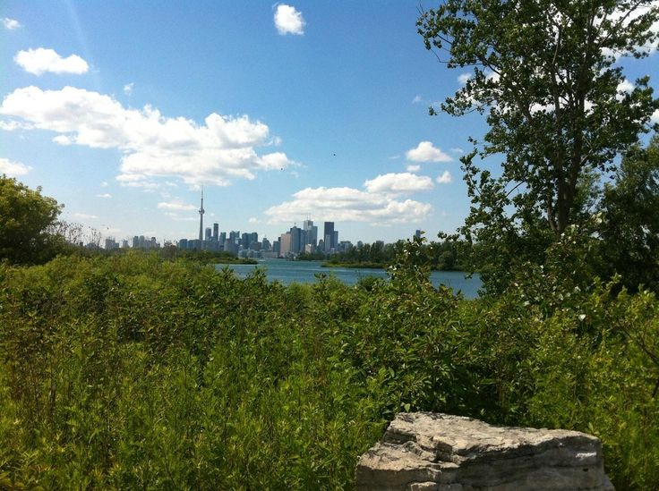 Book your tickets online for Tommy Thompson Park, Toronto: See 59 reviews, articles, and 66 photos of Tommy Thompson Park, ranked No.49 on TripAdvisor among 425 attractions in Toronto.