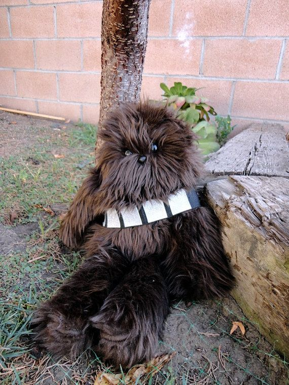 I want my own wookie!