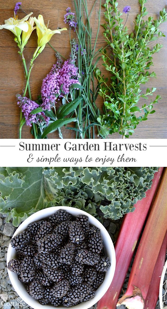 Enjoy your summer garden harvests - both flowers and edibles - with these easy ideas on how to use them- click for arranging tips and recipes!