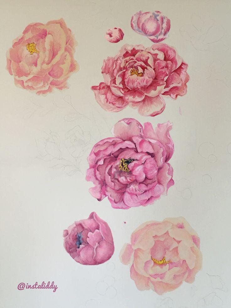 Peonie watercolour painting, work in progress