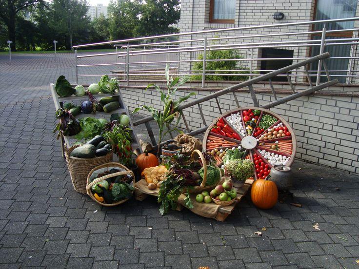 Ideen zum Erntedankfest