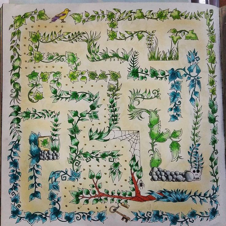 Maze Enchanted Forest PrismacolorAdult ColoringColoring BooksJoanna Basford Secret GardenEnchanted