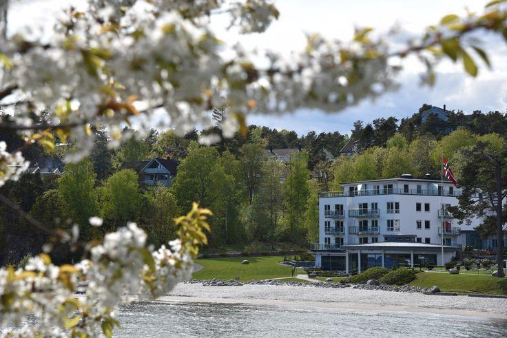 Dra på drømmeferie til Strand Hotel Fevik. http://sorlandetblogg.no/2016/05/20/drommeferie-pa-strand-hotel-fevik/