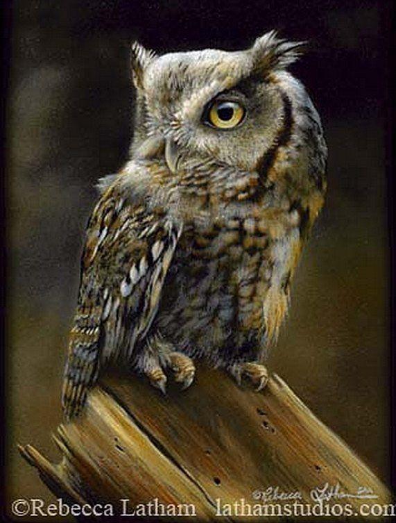 La peinture miniature de l'artiste américain Rebecca Latham