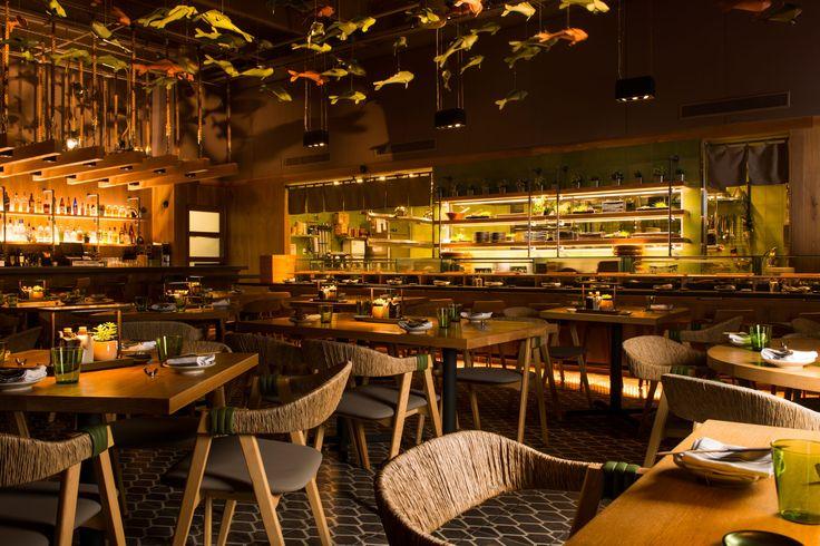 Best 11 Raw  Sushi Bars images on Pinterest  Sushi bars