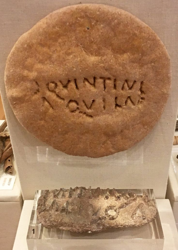 """Each century of Roman soldiers baked its own bread, branded with bronze stamps. """"Ɔ Quintini Aquilae"""" - The Century of Quintinius Aquila"""