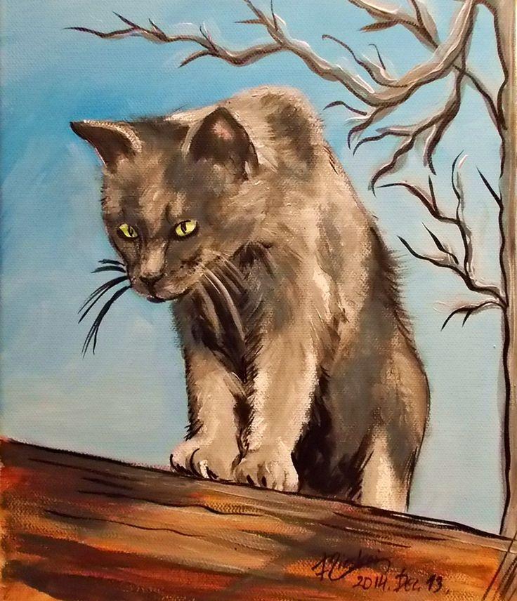 Macska-akril-vászon-30x25 cm