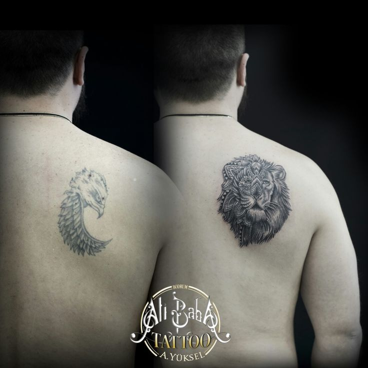 Bodrum dövme bodrum tattoo dovme kapama dovme cover up tattoo coverup aslan dövmesi lion tattoo ali baba tattoo ali yüksel mugla ink body art omuz dovmesi shoulder tattoo