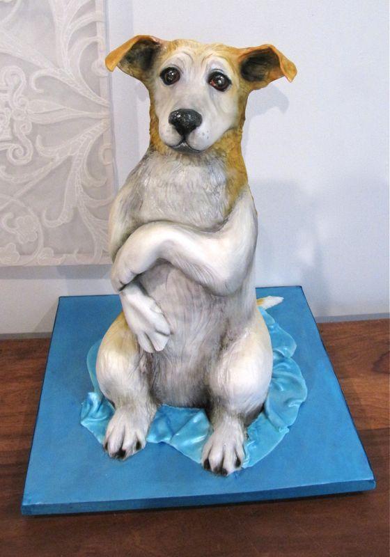 Brand Cute Jack Russell Terrier Dog Print Men s Casual Sneakers 7 5 B0725ZCNR3