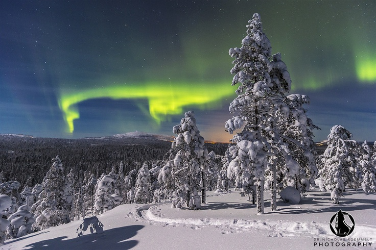 Aurora Borealis over Pyha Luosto National Park in Northern Finland