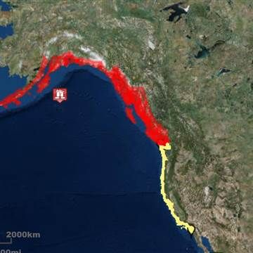 Tsunami alerts issued for entire West Coast after 7.9 magnitude quake Latest News