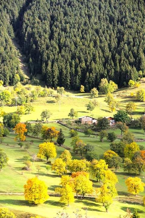 T-Sky's neighbor Artvin- TURKEY  www.haisitu.ro #haisitu #travel #turkey
