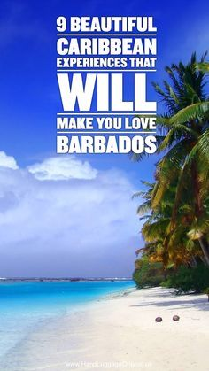 9 Beautiful Caribbean Experiences That Will Make You Love Barbados - Hand Luggage Only - Travel, Food & Photography Blog