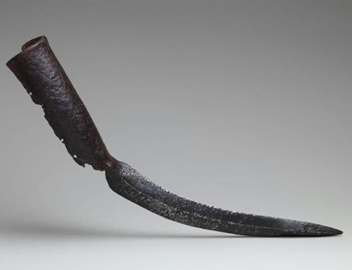 Une épée pour défense d'éléphant - http://www.2tout2rien.fr/une-epee-pour-defense-delephant/