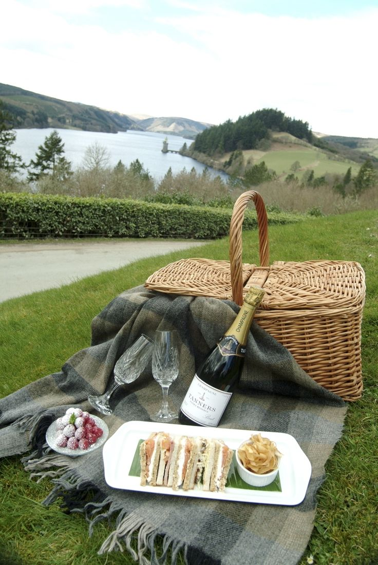 Champagne picnic hamper. I've always wanted to picnic somewhere really beautiful like this.