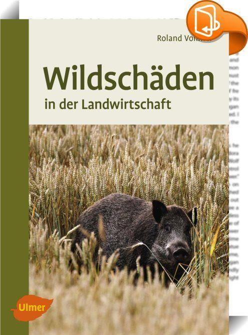 Wildschäden    :  Schalenwild, Wildkaninchen und Fasane können in landwirtschaftlichen Kulturen und in Weinbergen großen Schaden anrichten. Wildschäden bedeuten für Landwirte und Winzer Ertragsverluste. Erfahren Sie, wie Sie im Schadensfall zu Ihrem Recht kommen. Wie sind Wildschäden im Jagdgesetz definiert? Verschaffen Sie sich mit diesem Buch Einblicke in die Rechtslage und lernen Sie, wie Wildschäden bewertet werden, dann können Sie abschätzen, ob sich ein Schadensverfahren für Sie ...
