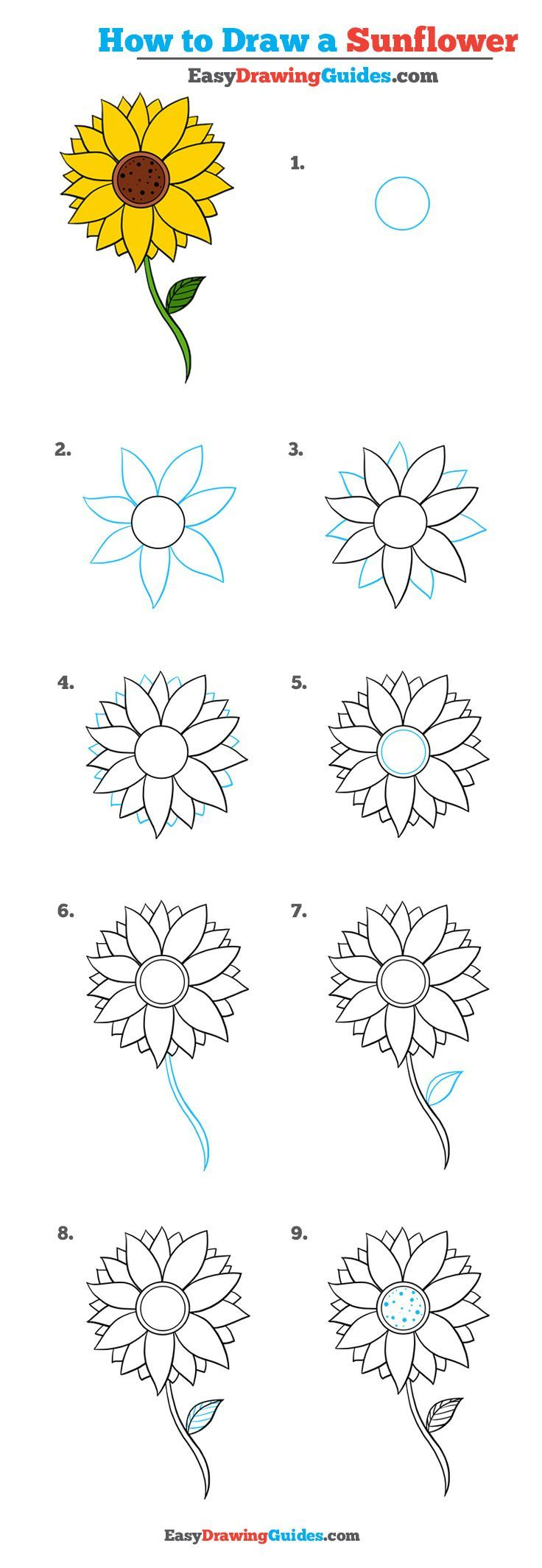 Learn How to Draw a Sunflower: Easy Step-by-Step Drawing Tutorial for Kids and Beginners. #sunflower #drawing #tutorial. See the full tutorial at https://easydrawingguides.com/how-to-draw-a-sunflower-really-easy-drawing-tutorial/