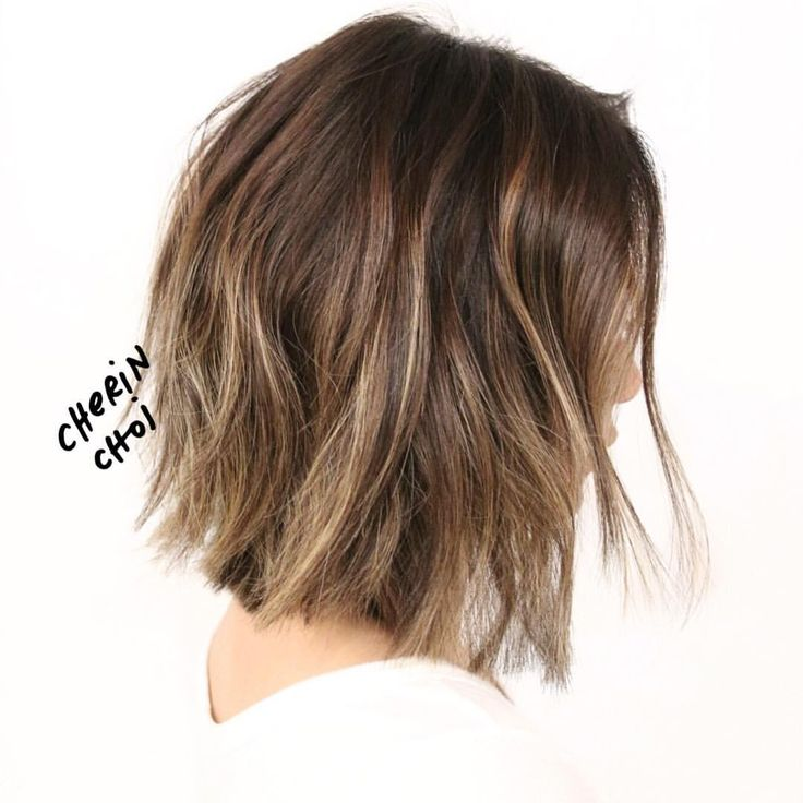 pictures of haircuts with bangs and layers 25 best ideas about low maintenance haircut on 6304