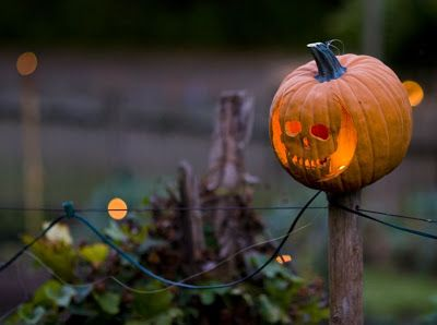 Usually not into anything but faces on jack o'lanterns...but I so dig this.