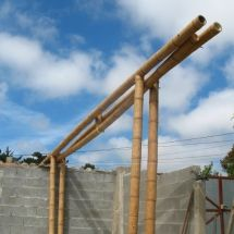 Cercha-Bambú