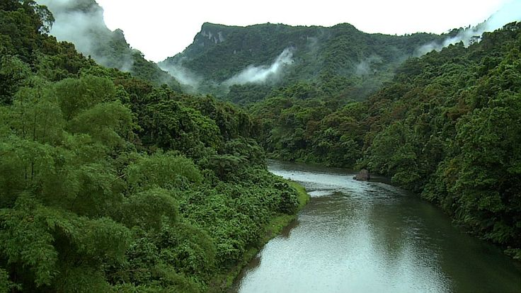 Packinglist for the amazon rainforest #travel #gotripit #amazon #rainforest #packinglist