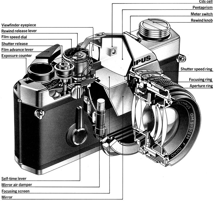 Symbols Glamorous Camera Diagram Images Reverse Search Crossword Film Physics Labeled Parts Worksheet Tattoo App Point And Shoot Camera Camera Art Kids Camera