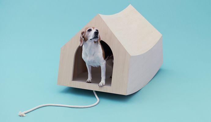 Canine Contemporary: Architecture For Dogs | Assemble Papers. Kenya Hara  Doesnu0027t Design U0027thingsu0027. His Cerebral Yet Elegant Work In Object And Experu2026