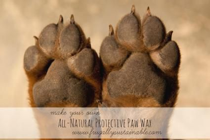DIY All-Natural Protection For Dog Paws... 2 oz. (approx. 2 tbsp.) olive , sunflower, or sweet almond oil  2 oz. (approx. 2 tbsp.) coconut oil (this is the BEST coconut oil on the planet) 1 oz. (approx. 1 tbsp.) shea butter 4 tsp. beeswax