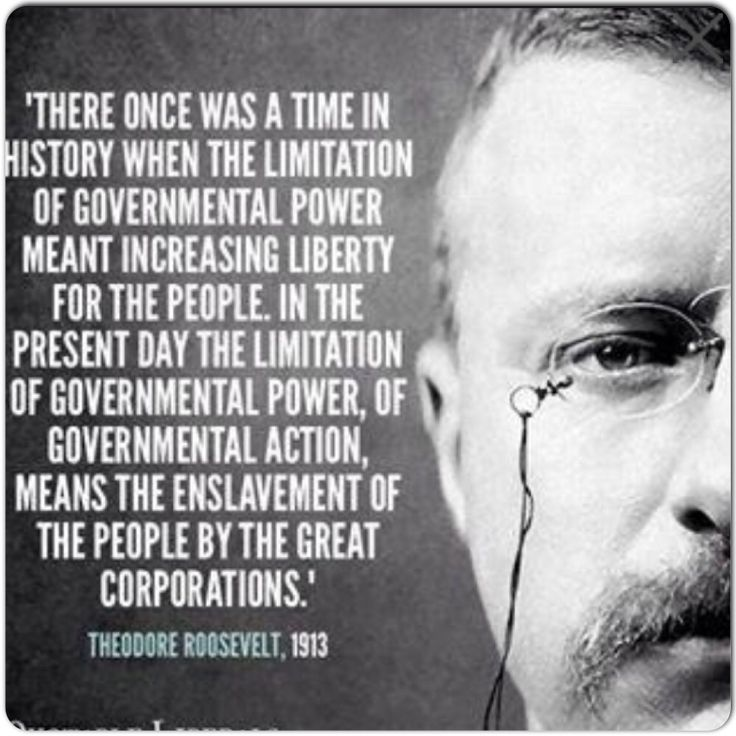 an introduction to the political history of theodore roosevelt On october 14, 1912, progressive party presidential candidate theodore roosevelt delivered one of the most remarkable campaign speeches in american history wounded in the chest by the bullet of a.