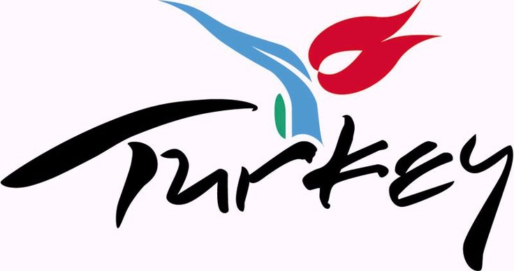 Tulip motif can be seen in various items concerning Turkey. Perhaps the best examples are the tulip motifs on the fuselage of the Turkish Airlines planes & on the logo of the official Turkey tourism portal.