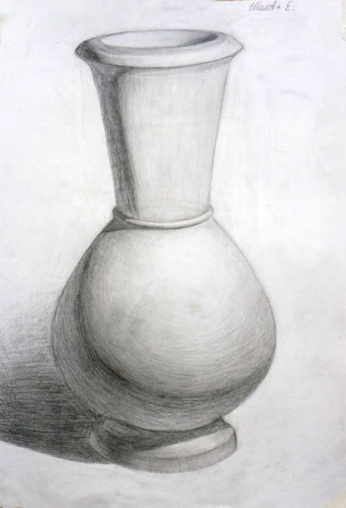 Rose In Vase Drawing