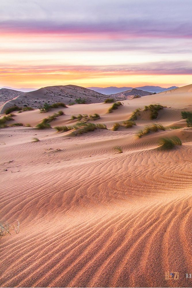 When the wind blew over the sand dunes by Lizi C