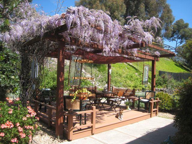 ... en plein air grâce à une pergola décorée des fleurs violettes