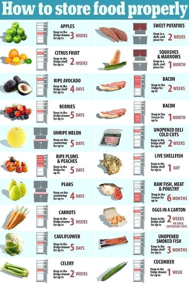 Refrigerator Food Storage How To Store Food In The Fridge Diagram